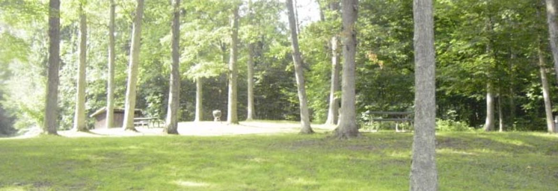 Whispering Oaks