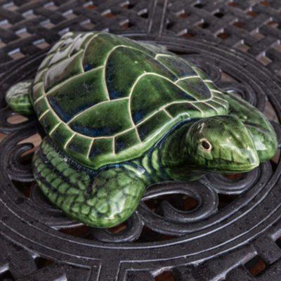 Turtle Back Mesa